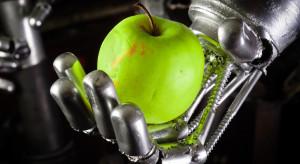 Naukowcy ze Stanfordu stworzyli robotyczną dłoń do zbioru owoców