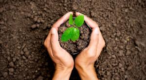 KE dofinansowuje realizowane przez PIORiN kontrole zdrowia roślin
