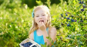 IŻŻ: Warzywa i owoce to istotny element diety dzieci