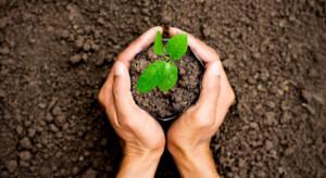 Rok 2020 ustanowiony Międzynarodowym Rokiem Zdrowia Roślin