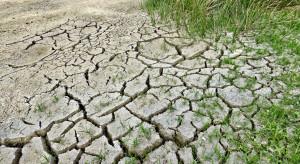 Coraz częściej odnotowuje się rekordowo mokre lub suche miesiące