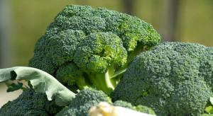 Hiszpania: Trudny sezon dla producentów i eksporterów brokuła