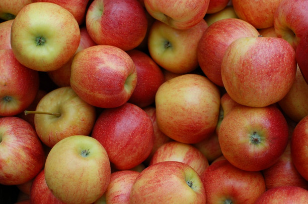 Polskie jabłka dobrze sobie radzą na chińskim rynku
