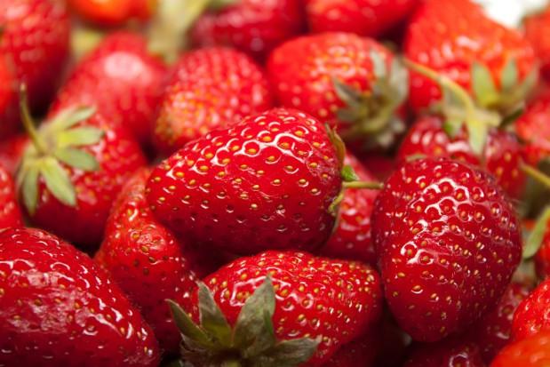 W Belgii i Holandii truskawki będą produkowane przez cały rok?