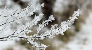 IMGW: ostrzeżenia przed silnym mrozem, i intensywnymi opadami śniegu