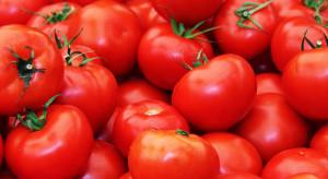 Rosja podwoi import tureckich pomidorów