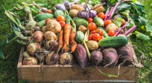 Żywność ekologiczna zawiera cztery razy mniej pestycydów niż konwencjonalna (video)