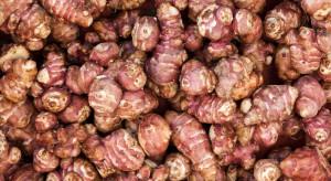 Mało znane warzywa dostępne na rynku hurtowym w Broniszach