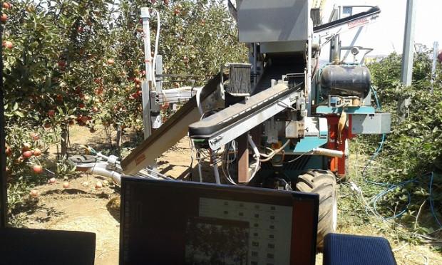 Robot izraelskich inżynierów potrafi sam zrywać jabłka - bez pomocy ludzi