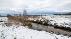 Pogoda: Do końca stycznia utrzyma się łagodne oblicze zimy