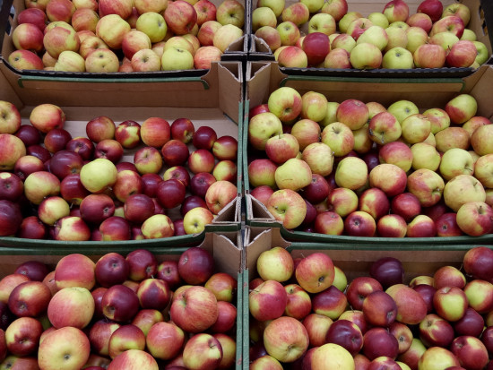 ZSRP: Co z sadownikami, którzy opłacili VAT-u za wycofane owoce?