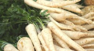 Ceny warzyw nadal wysokie. Pietruszka najdroższa