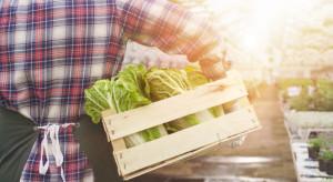 Czy system produkcji żywności należy zmienić?