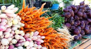 Ceny warzyw na rynkach hurtowych - wysokie, ale stabilne (analiza)