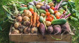Informatycy chcą uczynić produkcję żywności bardziej przyjazną dla środowiska