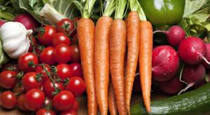 Media: Rosyjska produkcja warzyw gwałtownie rośnie