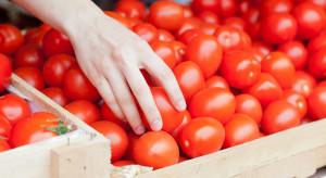 Wielka Brytania: Przez brexit konsumenci zapłacą więcej za pomidory