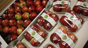 Lubelskie jabłka promowane i sprzedawane w sieci sklepów Stokrotka i E.Leclerc