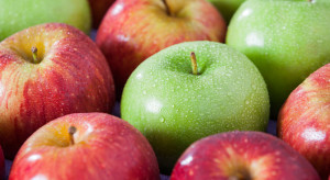 Lubelskie: Blisko 600 tys. zł na promocję jabłek z regionu