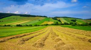 W Rzeszowie dyskutowano o strategii rozwoju obszarów wiejskich w woj. podkarpackim