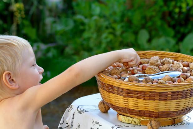Badacze: Dzieci powinny spożywać produkty zawierające orzechy od wczesnych lat
