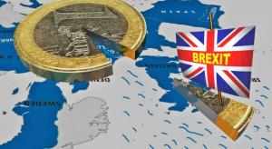 Holandia: Brexit bez umowy spowoduje spadek eksportu o 20 proc.