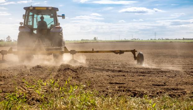 Rolnicy z Warmii i Mazur wciąż czekają na odszkodowania suszowe