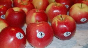 """""""Jabłka Grójeckie"""" na targach Fruit Logistica 2019 w Berlinie"""