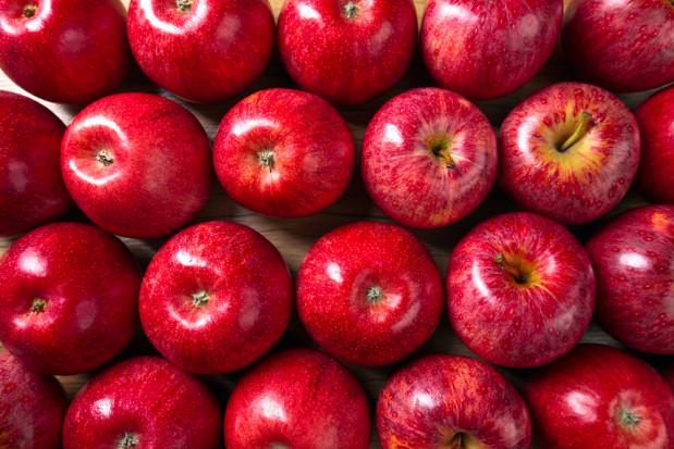 Stowarzyszenie Kraina Sadów i Ogrodów wdraża nową technologię produkcji jabłek bez pozostałości