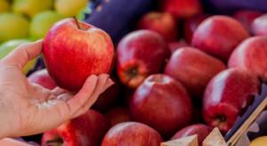 Parlament Europejski chce przejrzystości w procedurze zatwierdzania pestycydów