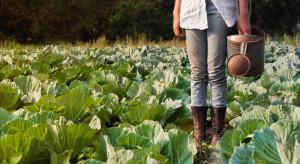 Młodzi Niemcy niechętnie podejmują pracę w rolnictwie