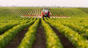 Hiszpańscy rolnicy chcą ambitnej Wspólnej Polityki Rolnej