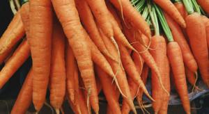 20 rolników ekologicznych, w tym czterech z Łódzkiego, w projektach grantowych Carrefour Polska
