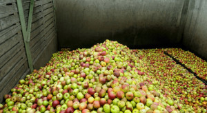 PO składa wniosek do CBA w związku z interwencyjnym skupem jabłek