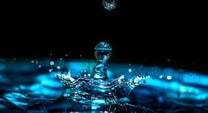 Związek Sadowników RP interweniuje w resorcie środowiska ws. dziwnie wysokich opłat za wodę