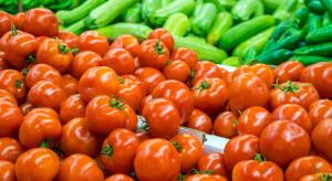 Rosja: Produkcja warzyw szklarniowych notuje kolejne wzrosty