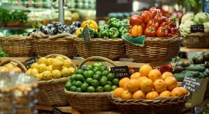 KE uruchomi nowe obserwatoria dla rynku owoców i warzyw w 2019 r.
