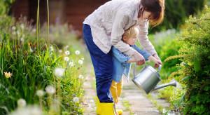 Mama 4 Plus - kto może otrzymać rodzicielskie świadczenie uzupełniające?