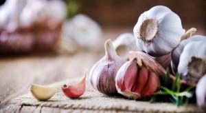 Im większe spożycie warzyw cebulowych, tym mniejsze ryzyko raka jelita grubego