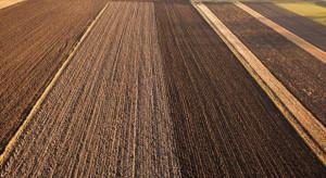 Rosną ceny ziemi rolnej
