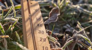 Termometry w poniedziałek mogą pokazać blisko 20 stopni Celsjusza