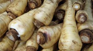 Pietruszka droższa od ananasa. Ceny warzyw biją rekordy