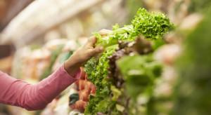Brytyjska sieć supermarketów chce stworzyć wiszące ogrody w sklepach