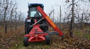 Wiosenna regulacja wzrostu drzew – cięcie korzeni (wideo)