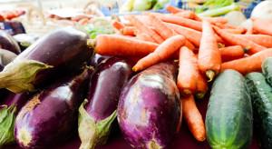 Carrefour: Trzech rolników z Wielkopolski otrzyma dofinansowanie na rozwój produkcji ekologicznej