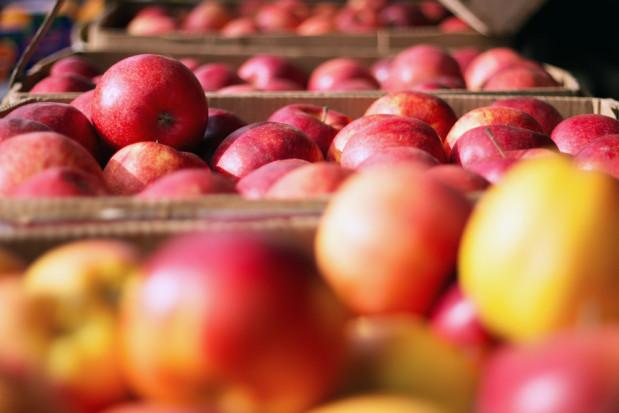 Eksport ukraińskich owoców wyższy o 35 proc. niż w ubiegłym roku