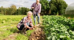 Polska nie jest jedynym krajem, który ma odrębne ubezpieczenie dla rolników