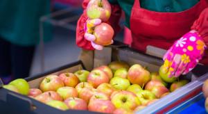 Włochy zwiększą eksport świeżych owoców do Indii