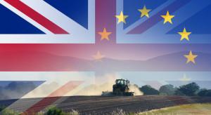 PIORiN: Zasady wymiany handlowej z Wlk. Brytanią w przypadku brexitu - bez umowy