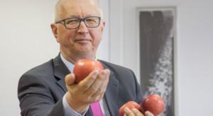 Marek Marzec, Ewa-Bis: Problem z eksportem polskich jabłek wynika z ich jakości
